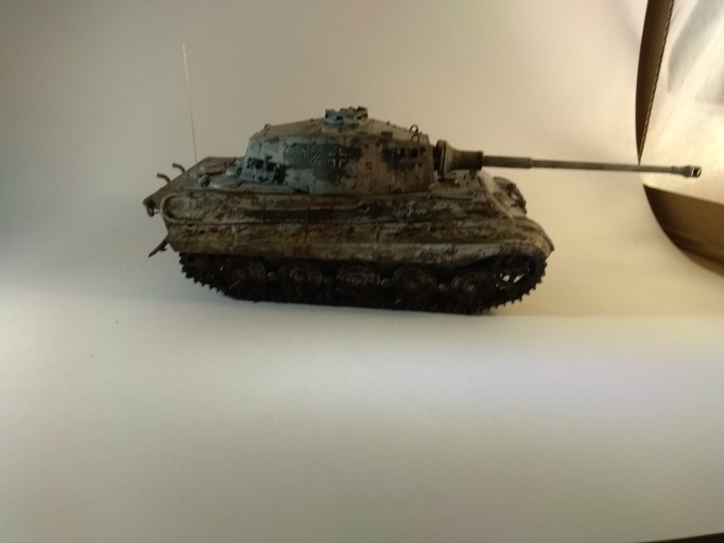 King Tiger First Picture In Homemade Light Box